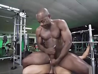 black daddy gay